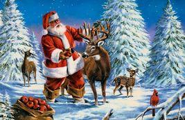 Noel renne bis
